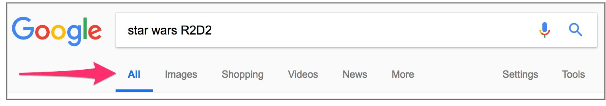 SERP search options